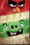 Angry Birds- Raah! Stampa su tela