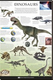 Dinosaurs Dorling Kindersley Educational Poster Print Stretched Canvas Print