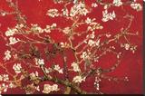 Almond Blossom - Red Trykk på strukket lerret av Vincent van Gogh