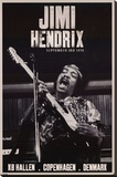 Jimi Hendrix Copenhagen 1970 Music Poster Stretched Canvas Print