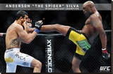 UFC - Anderson Silva Sports Poster Stretched Canvas Print