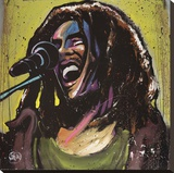 Bob Marley Jams Stretched Canvas Print by David Garibaldi
