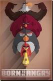 Angry Birds- Born To Be Angry Stampa su tela