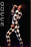 Freddie Mercury-Leotard Stretched Canvas Print