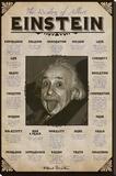 Albert Einstein Sträckt Canvastryck