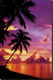 Tahitian Sunset - Şasili Gerilmiş Tuvale Reprodüksiyon
