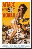 Attack of the 50 ft Woman Stretched Canvas Print