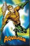 Dc Comics Aquaman Reprodukce na plátně
