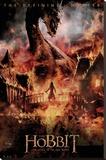 The Hobbit - Battle of Five Armies Dragon Stretched Canvas Print