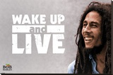 Bob Marley - Wake Up and Live Stretched Canvas Print