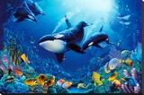 Delight of Life Underwater Scene Art Print Poster - Şasili Gerilmiş Tuvale Reprodüksiyon