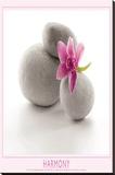 Harmony (Flower & Stones) Art Poster Print Płótno naciągnięte na blejtram - reprodukcja