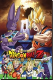 Dragon Ball Z Stretched Canvas Print