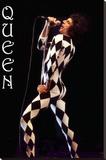 Freddie Mercury-Leotard Lærredstryk på blindramme