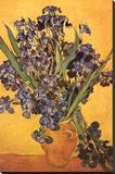 Vincent Van Gogh Les Iris Art Print Poster Lærredstryk på blindramme