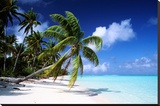 Polynesian Beach Stretched Canvas Print
