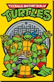 Teenage Mutant Ninja Turtles (Retro) - Şasili Gerilmiş Tuvale Reprodüksiyon