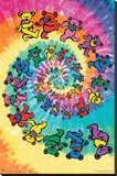 Grateful Dead Spiral Bear Stretched Canvas Print