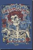 Grateful Dead Fillmore Stretched Canvas Print