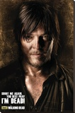Walking Dead - Daryl Shadows Stretched Canvas Print