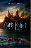 Harry Potter and the Deathly Hallows Stretched Canvas Print