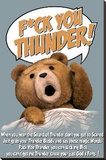 Ted - F@k You Thunder Stretched Canvas Print