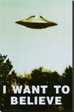 The X-Files - I Want To Believe Print Lærredstryk på blindramme