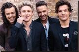 One Direction- Wall Flare Reproducción en lienzo de la lámina