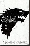 Game of Thrones - Winter is Coming - House Stark - Şasili Gerilmiş Tuvale Reprodüksiyon