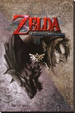 Zelda - Twilight Princess Stretched Canvas Print