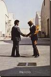 PINK FLOYD, Wish You Were Here - Şasili Gerilmiş Tuvale Reprodüksiyon