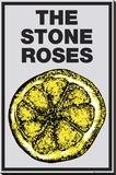 Stone Roses-Lemon Lærredstryk på blindramme