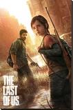The Last of Us Kunst op gespannen canvas
