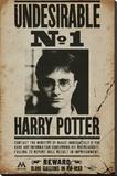 Harry Potter - Undesirable No 1 - Şasili Gerilmiş Tuvale Reprodüksiyon
