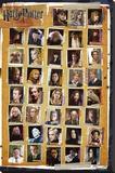 Harry Potter and the Deathly Hallows - Characters - Şasili Gerilmiş Tuvale Reprodüksiyon