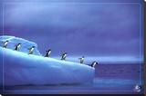 Leadership, Save Our Planet (Penguins) Art Poster Print Reproducción de lámina sobre lienzo