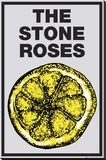 Stone Roses-Lemon Stretched Canvas Print