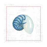 Navy Nautilus Shell on Newsprint with Red Prints by Emily Adams