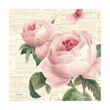 Roses in Paris VI Posters av Katie Pertiet