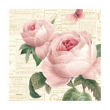 Roses in Paris VI Prints by Katie Pertiet