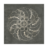 Rosette IV Gray Prints by Wild Apple Portfolio