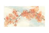 Peach Blossom II Art by Chris Paschke