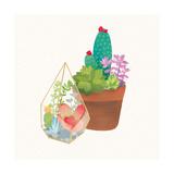 Succulent Garden I Posters by Wild Apple Portfolio