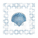 Navy Scallop Shell on Newsprint Prints by Emily Adams