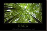 Wachstum, Englisch Leinwand
