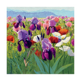 Early June Prints by Shirley Novak