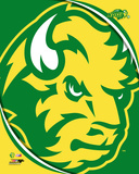 North Dakota State Bison 2016 Logo Photo