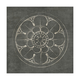 Rosette III Gray Posters by Wild Apple Portfolio