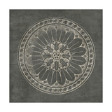 Rosette I Gray Prints by Wild Apple Portfolio