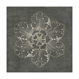 Rosette V Gray Print by Wild Apple Portfolio
